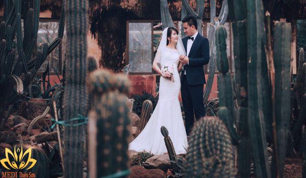 Chụp ảnh cưới Ba Vì ở nhà kính xương rồng